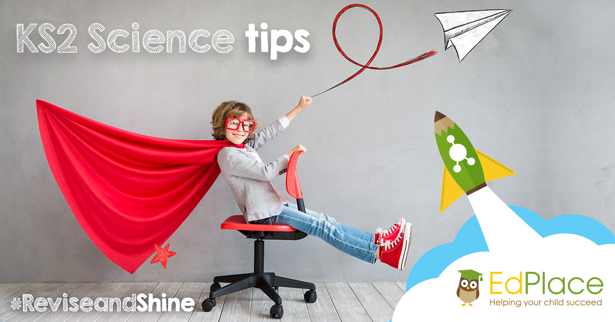 KS2 Science tips